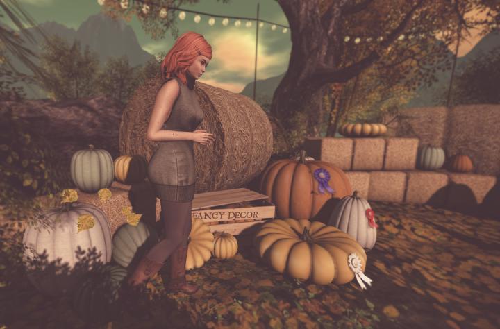 pumpkins_001