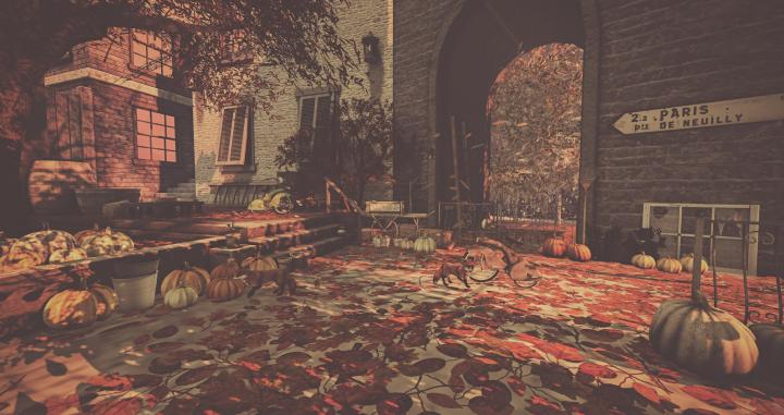 fameshed-autumn_001-edit