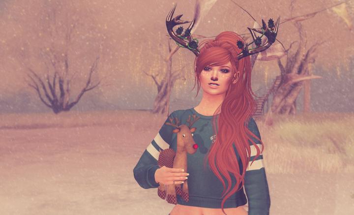 Reindeers aren't just forChristmas!