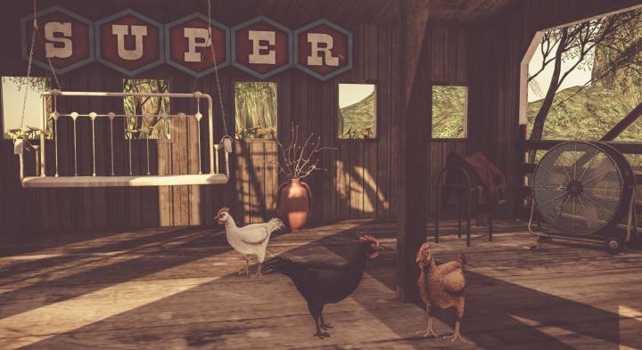jian-chickens-edit