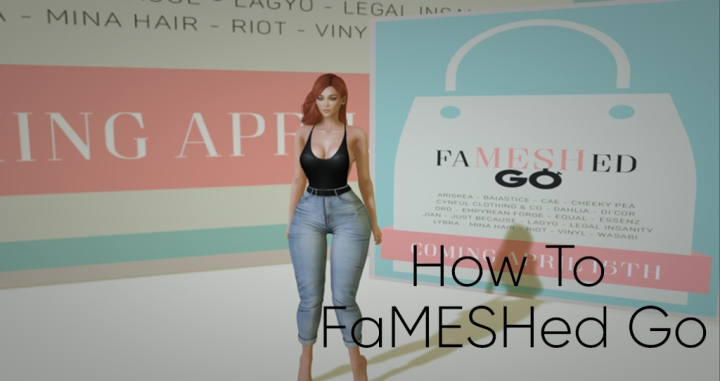 How To FaMESHed Go