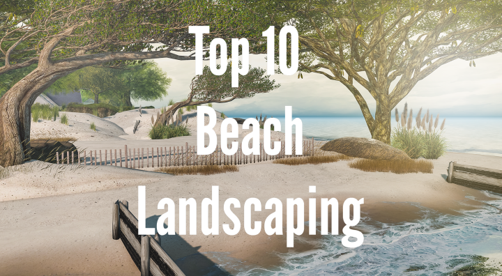 Top 10 Beach Landscaping Items